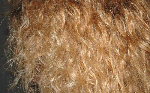 Blondschopf